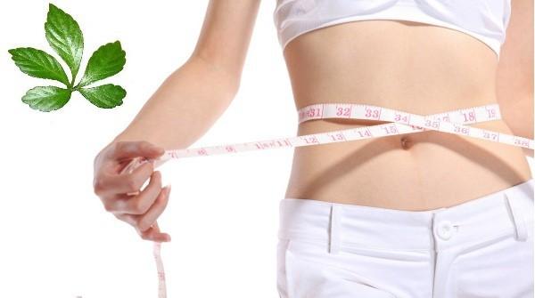 Mua Thuốc giảm cân tại Huế